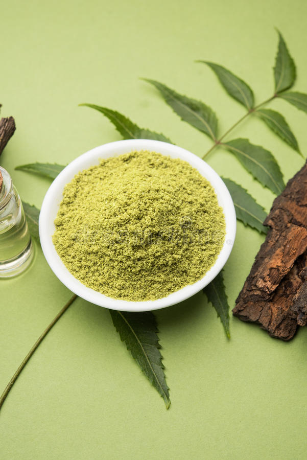 Ayurvedic neem products like paste, powder, oil, juice, tooth care. Medicinal Ayurvedic Azadirachta indica or Neem leaves in mortar and pestle with neem paste royalty free stock image