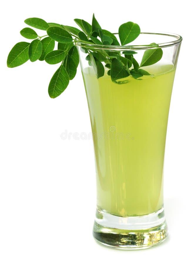 Ayurvedic-Saft gemacht von Moringa-Blättern lizenzfreies stockfoto