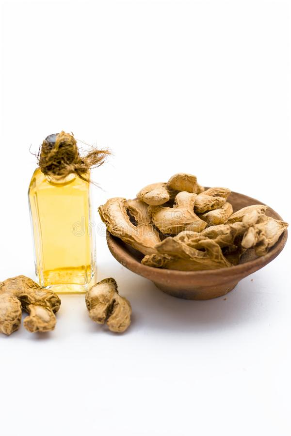 Ayurveidc herb dried ginger with its extract oil in a transparent bottle isolated on white used in many ayurvedic treatments. stock images