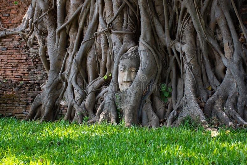 Ayutthaya, древний город Thailan стоковые фотографии rf