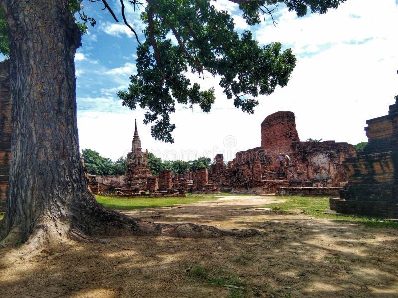 Ayutthaya av Thailand historia av den historiska staden för thailändskt folk royaltyfri bild