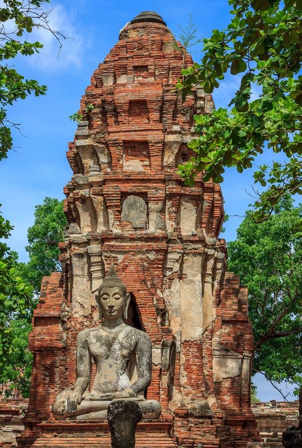 Ayutthaya Buddha Statue stockbilder