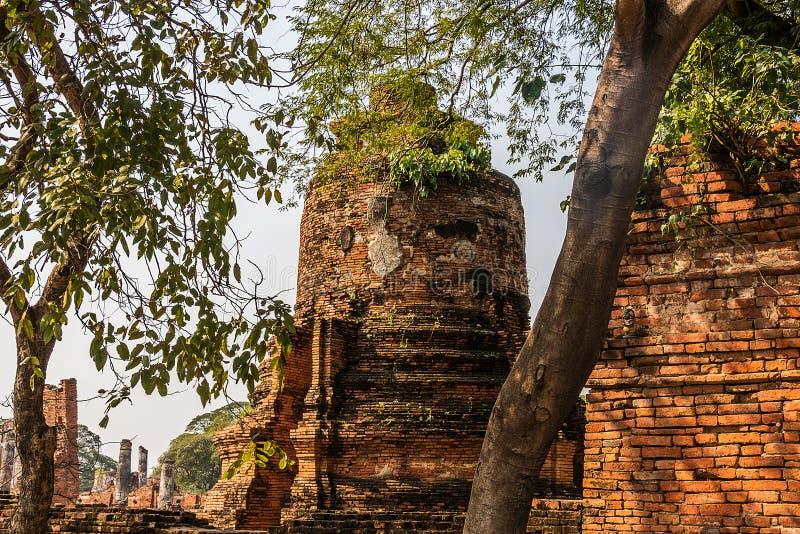 Ayutthaya de overblijfselen van het oude koninkrijk van Siam Thailand stock foto