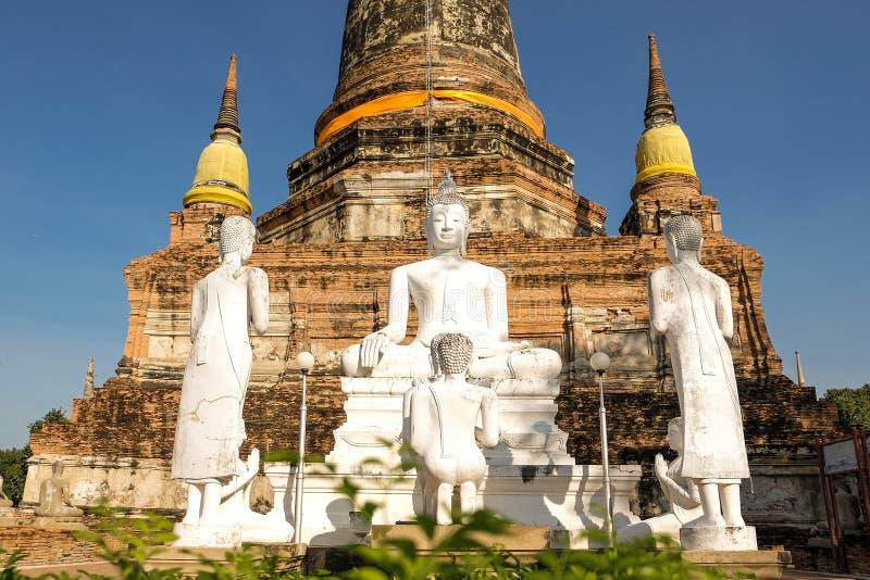 Ayutthaya historical park ancient kingdom royalty free stock photo