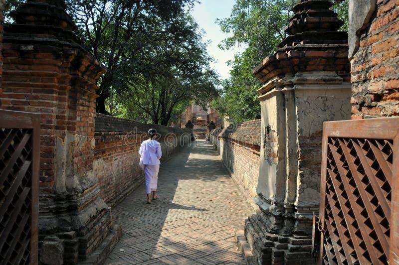 ayutthaya maheyong泰国wat 库存图片