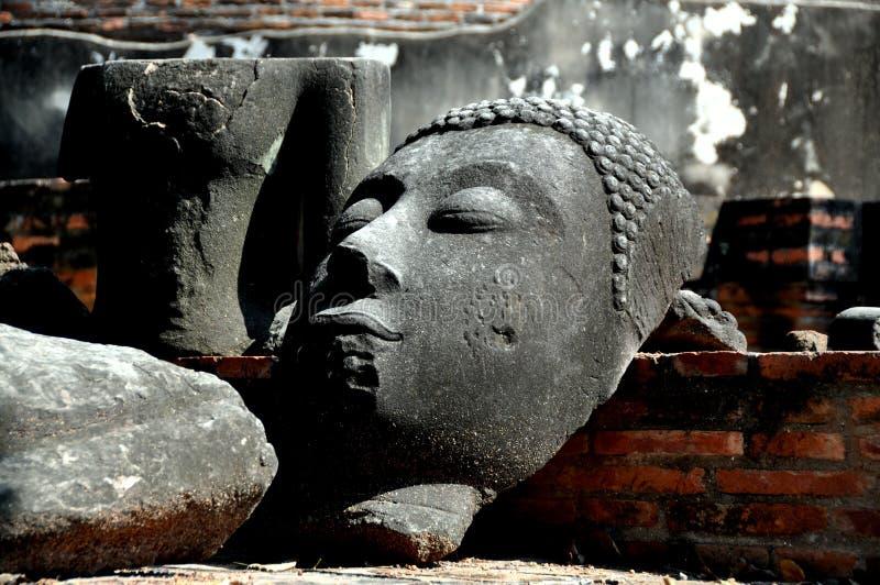 Ayutthaya, Tailândia: Cabeça de Buddha imagens de stock