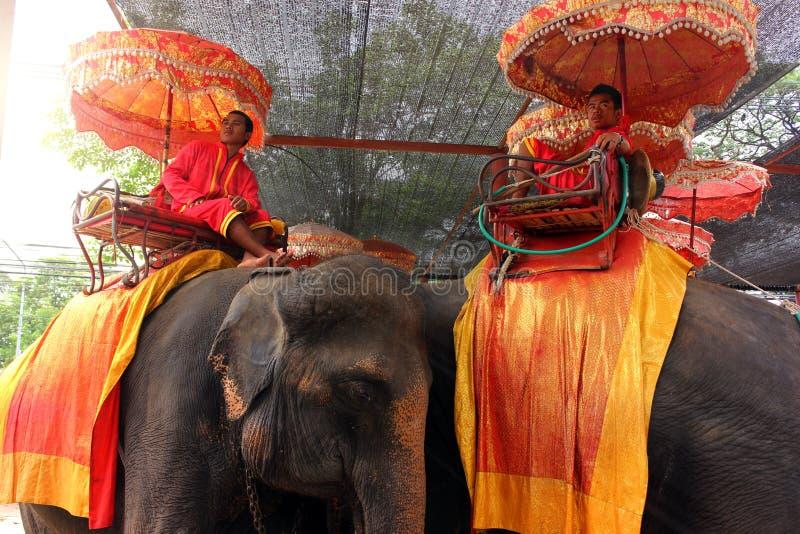 Ayutthaya, Tail?ndia - 29 de abril de 2014 Cavaleiros do elefante que tomam um resto no pal?cio dos elefantes imagens de stock royalty free