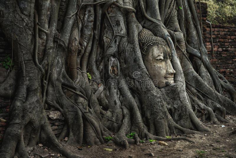 Ayutthaya Tailandia - 27 de marzo de 2018: Jefe de la piedra arenisca Buddh fotografía de archivo