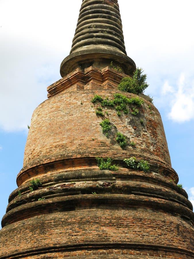 Ayutthaya, Thailand royalty-vrije stock foto's