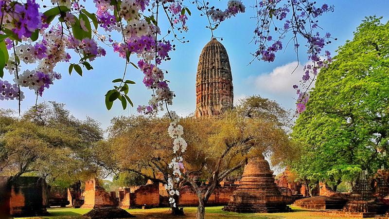 ayutthaya Thailand fotografia royalty free
