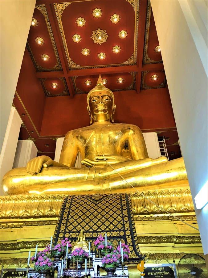 Ayutthaya, Thailand - 3. Mai, 2019: Alter Tempel Ayutthaya-Provinz, Thailand Große Buddha-Statue von Wat Mongkol Bophit Temple lizenzfreies stockbild