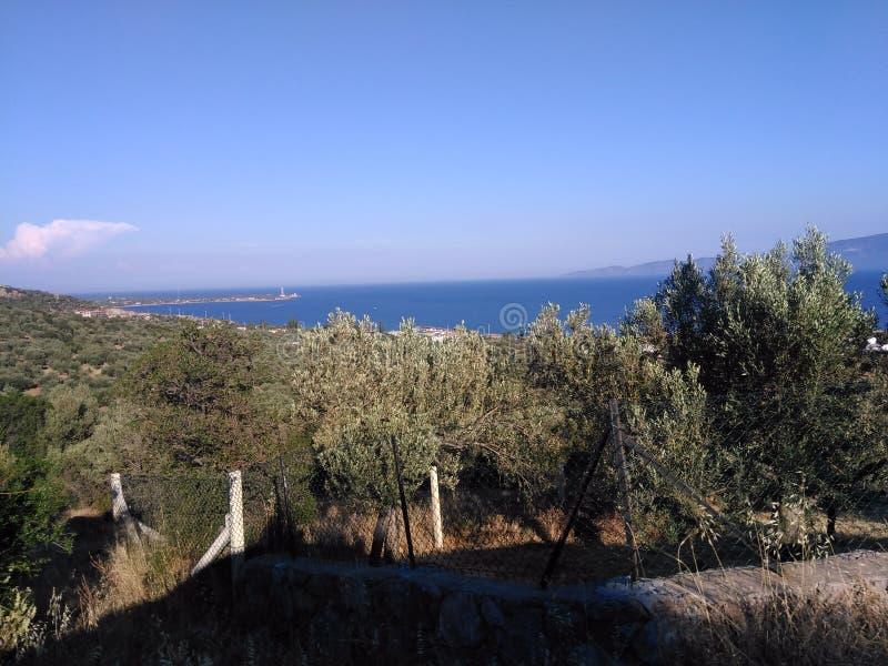 Ayvacik, midilli wyspy morza egejskiego teren Turcja, lato 2019 obraz stock