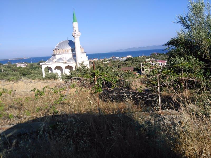 Ayvacik, midilli wyspy morza egejskiego teren Turcja, lato 2019 zdjęcia stock