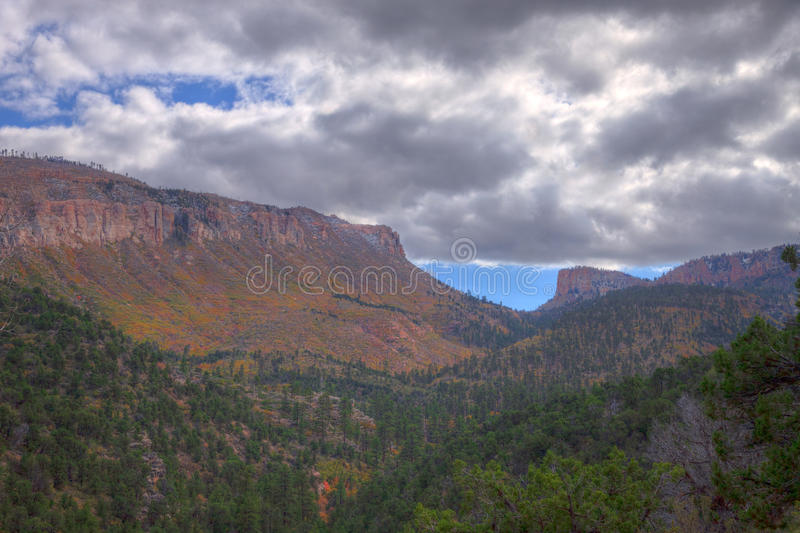 AZ_Grand Canyon-N Rim-Saddle Mountain Wilderness. Walking on the Saddle Mountain trail to the Nankoweep trail in Autumn was a unique and very scenic experience royalty free stock photo