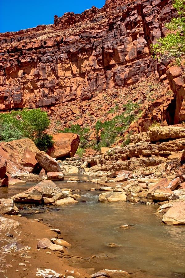 Download AZ- Paria Canyon Wilderness Stock Photo - Image: 19966336
