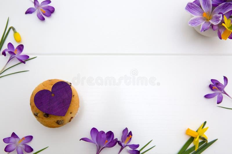 Azafranes y magdalena p?rpuras del chocolate en el fondo blanco imágenes de archivo libres de regalías