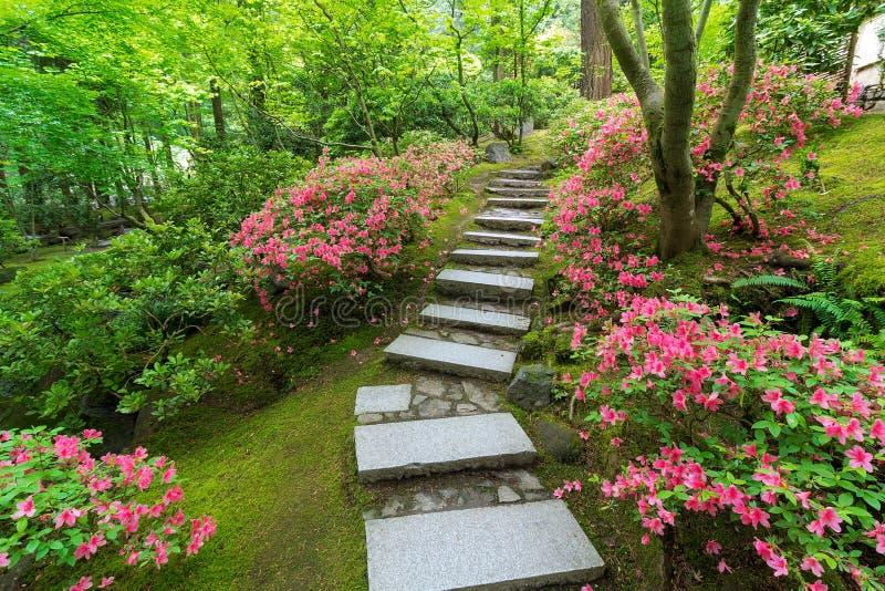 Azalées en fleur le long des escaliers en pierre japonais image stock