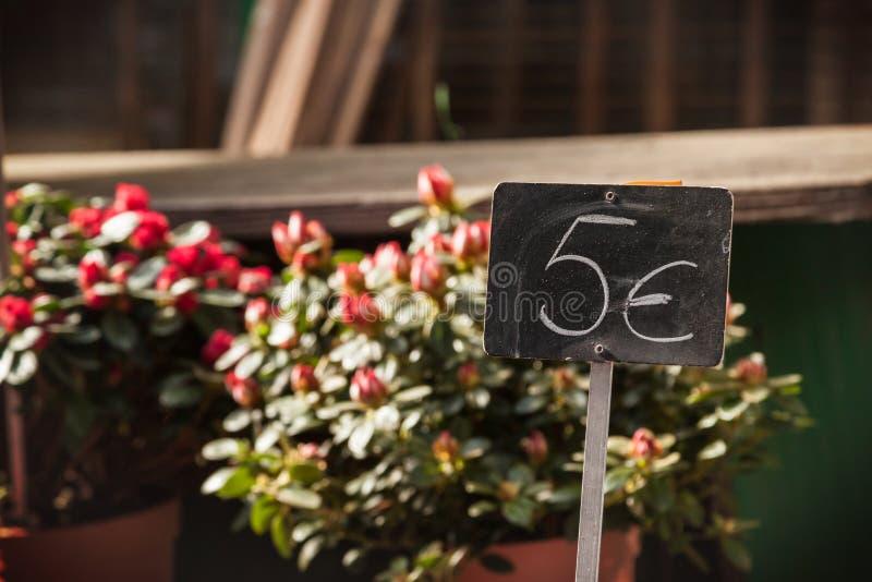 Bloemen bij markt royalty-vrije stock afbeeldingen
