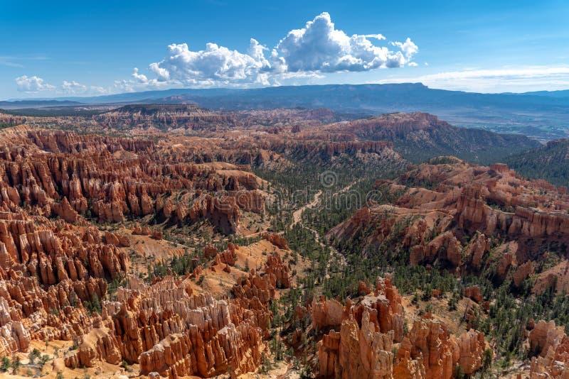 Azarentos na luz solar em Bryce Canyon National Park em Utá fotos de stock