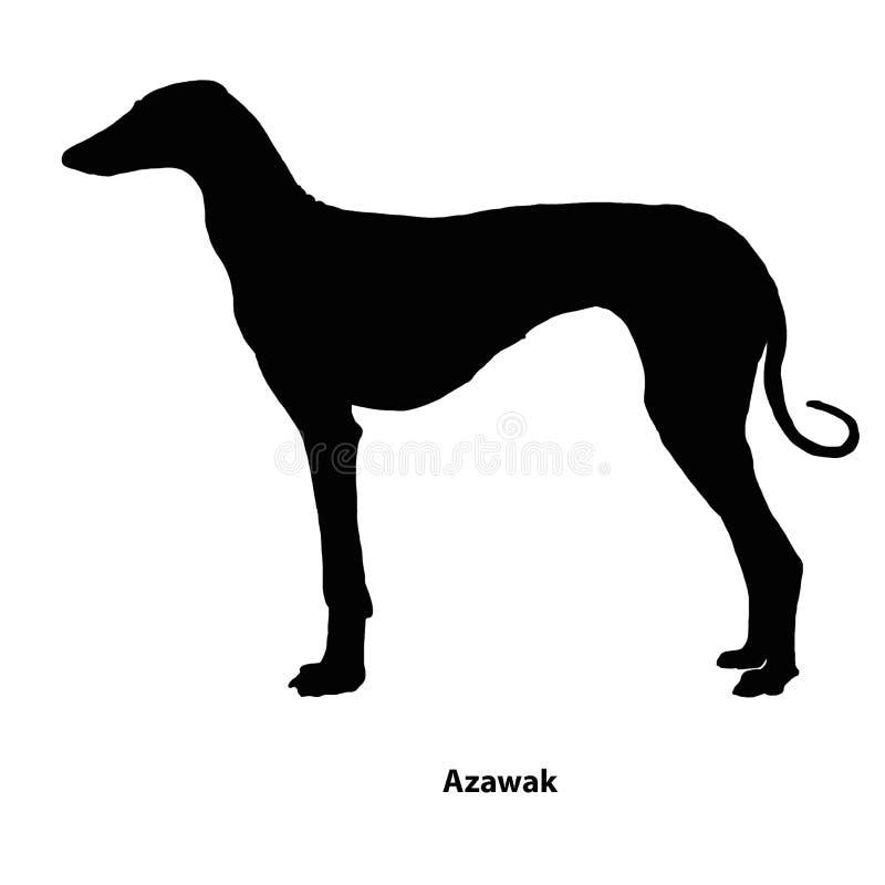 Azawak inu czarny i biały kontur ilustracji