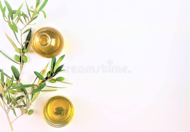 Azeite com um ramo de azeitonas verdes no fundo branco fotos de stock royalty free