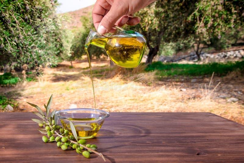 Azeite virgem extra de derramamento do cretan da garrafa em uma bacia na tabela de madeira em um campo da oliveira fotos de stock royalty free
