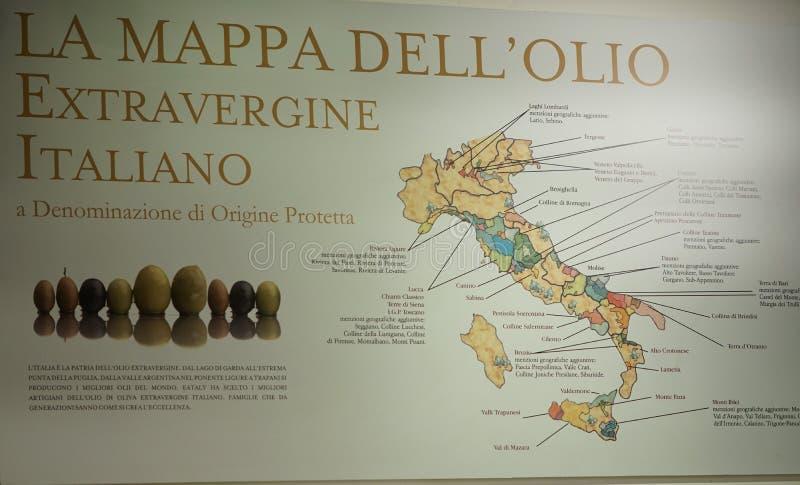 Azeite virgem extra italiano ilustração do vetor