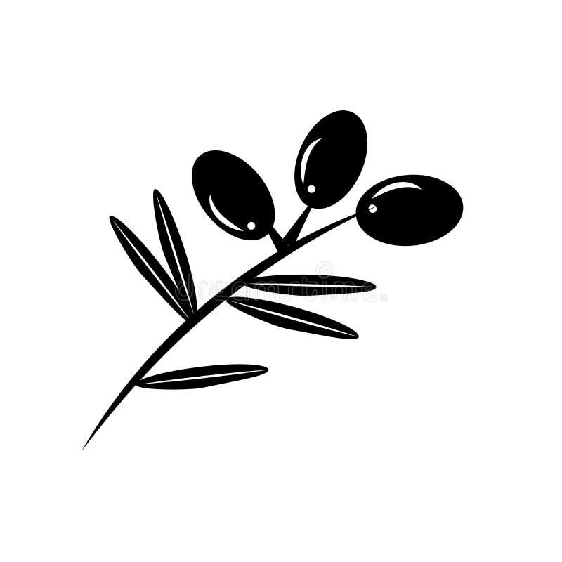 Azeitonas em um sinal e em um símbolo do vetor do ícone do ramo isoladas no fundo branco, azeitonas em um conceito do logotipo do ilustração royalty free