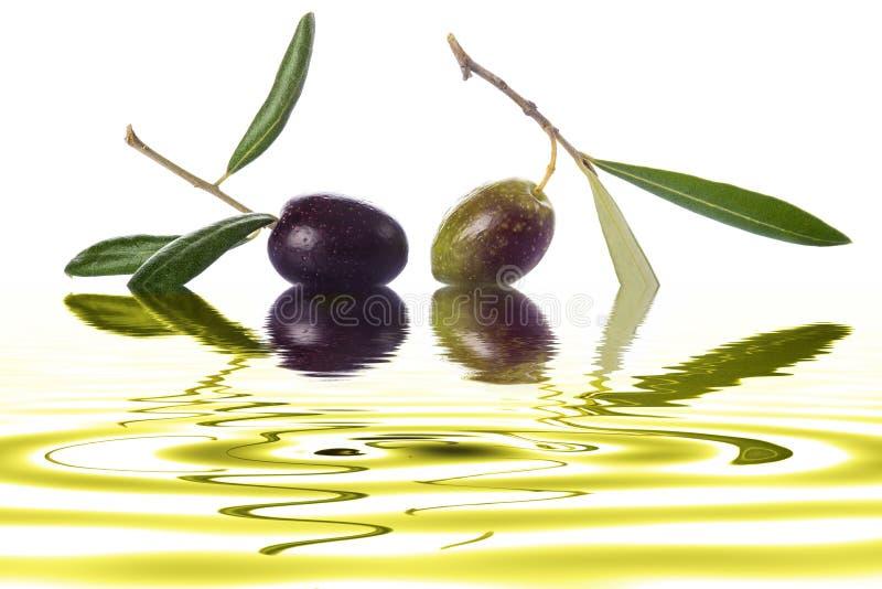 Azeitonas verdes e pretas para fazer o óleo foto de stock