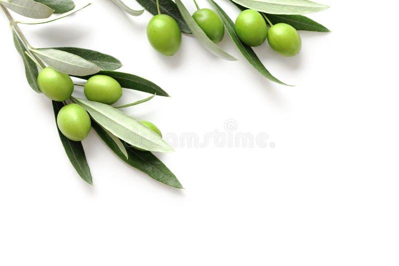 Azeitonas verdes no branco imagens de stock royalty free
