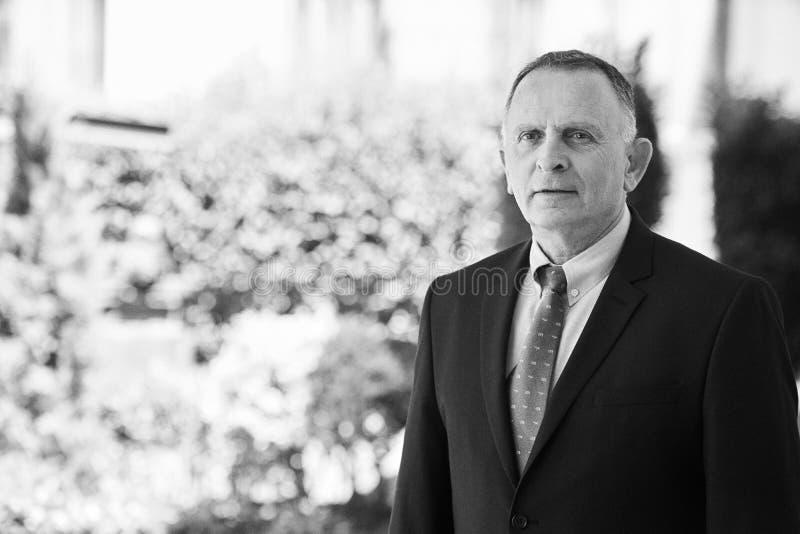 Azerbaijan, Baku - June 07, 2018: Ambassador Dan Staw portrait. Israeli Ambassador to Azerbaijan Mr. Dan Staw stock photo