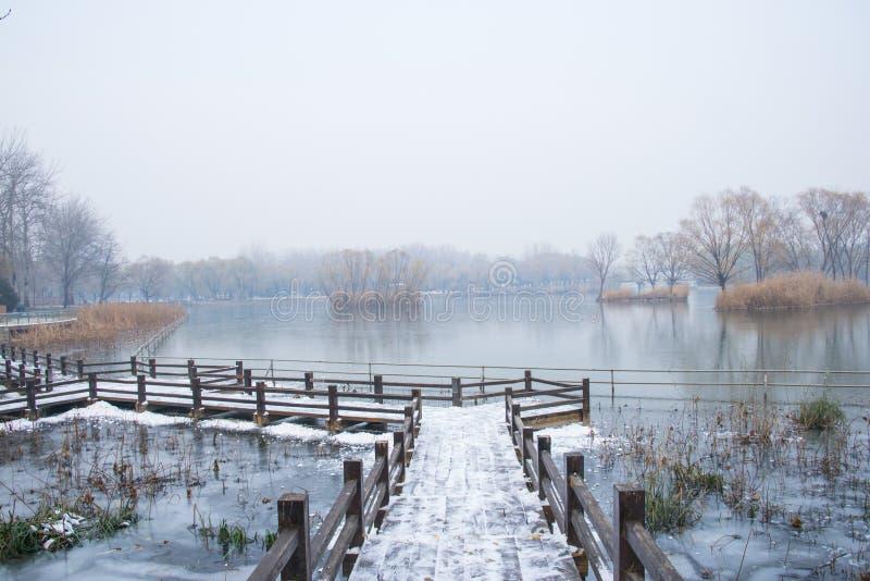 Azië China, Peking, Chaoyang-Park, de winter sceneryï ¼ ŒThe houten brug, sneeuw stock afbeeldingen