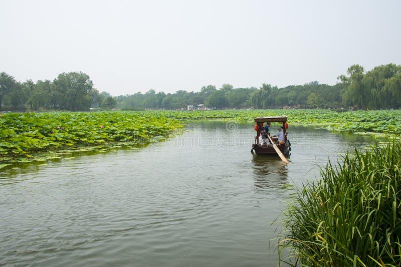 Azië China, Peking, Oud de Zomerpaleis, lotusbloemvijver, de boot stock afbeelding