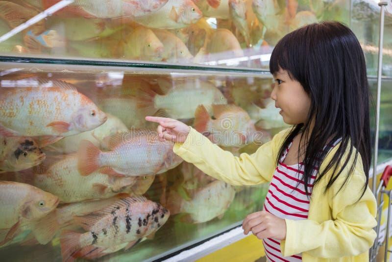 Aziaat Weinig Chinese Meisje het letten op vis stock afbeeldingen