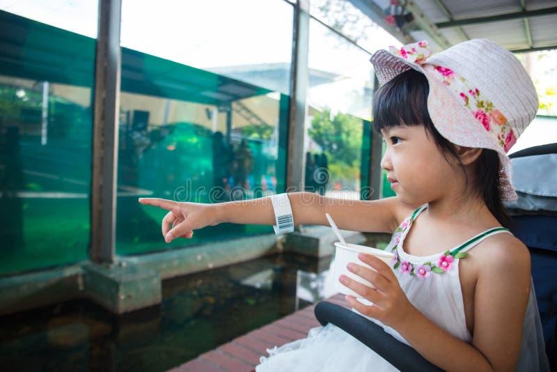 Aziatisch Chinees meisje die roomijs eten en op vissen letten stock afbeeldingen