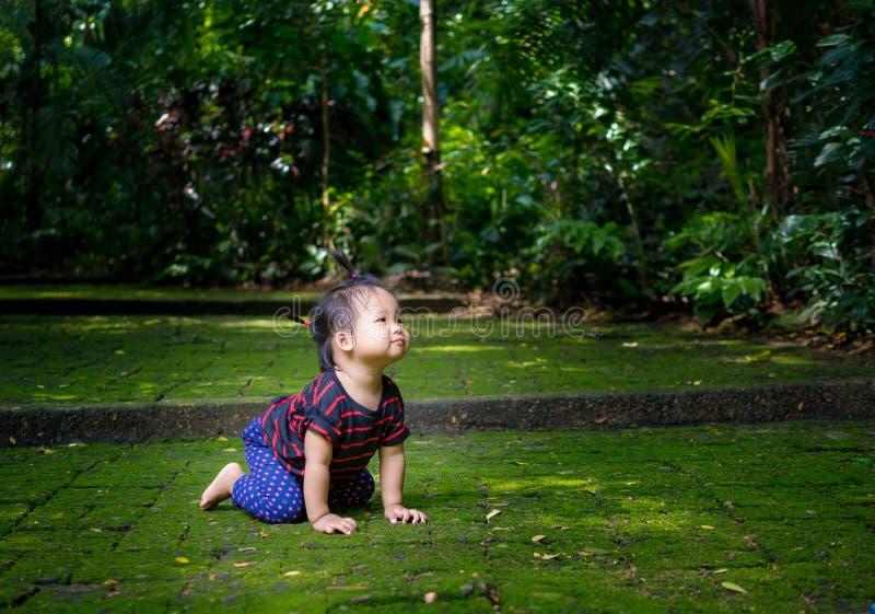 Aziatisch meisje die op groene vloer kruipen stock afbeeldingen
