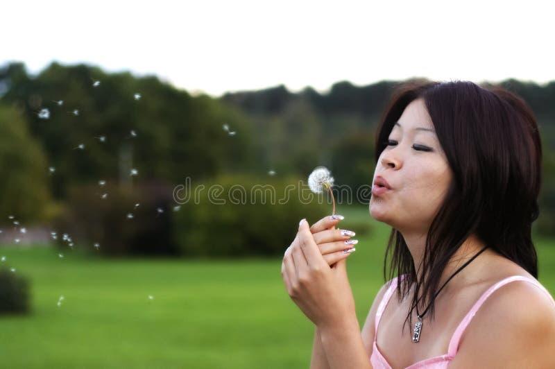 Aziatisch meisje met paardebloem royalty-vrije stock foto