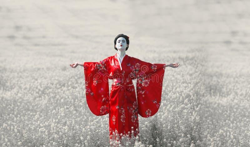 Aziatisch stijl vrouwelijk portret, kunstkleur royalty-vrije stock afbeelding