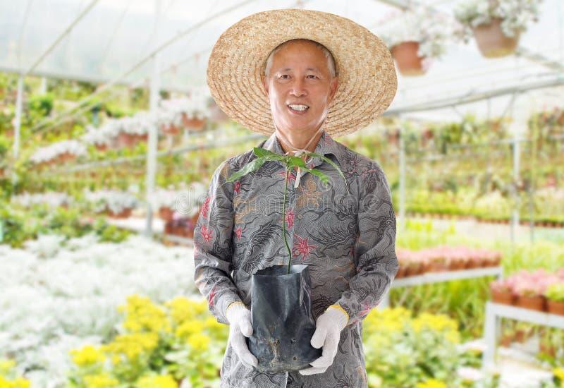 Aziatische Chinese landbouwer stock afbeelding