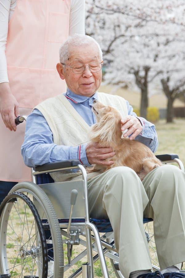 Aziatische hogere mensenzitting op een rolstoel met verzorger en hond royalty-vrije stock afbeeldingen
