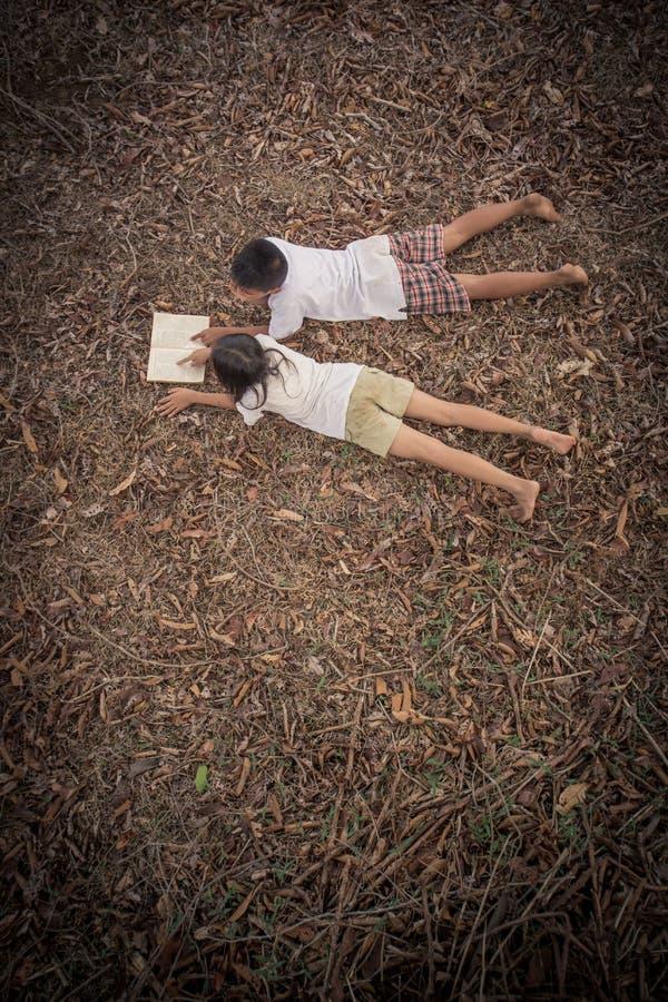 Aziatische jonge geitjes die in het kader van de boom en het gelezen boek liggen stock afbeeldingen