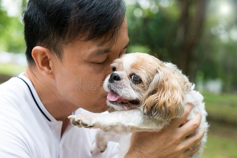 Aziatische jonge mens met zijn Shih Tze-hond stock foto's