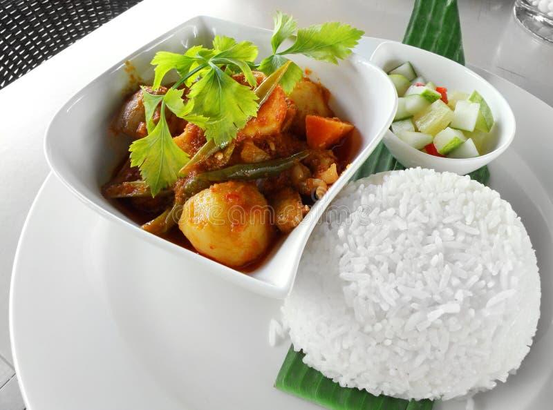 Aziatische kerrieschotel met rijst stock foto