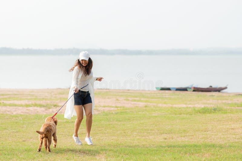 Aziatische levensstijlvrouw die en met de hond van de golden retrievervriendschap in zonsopgang openlucht het park van de de zome royalty-vrije stock fotografie