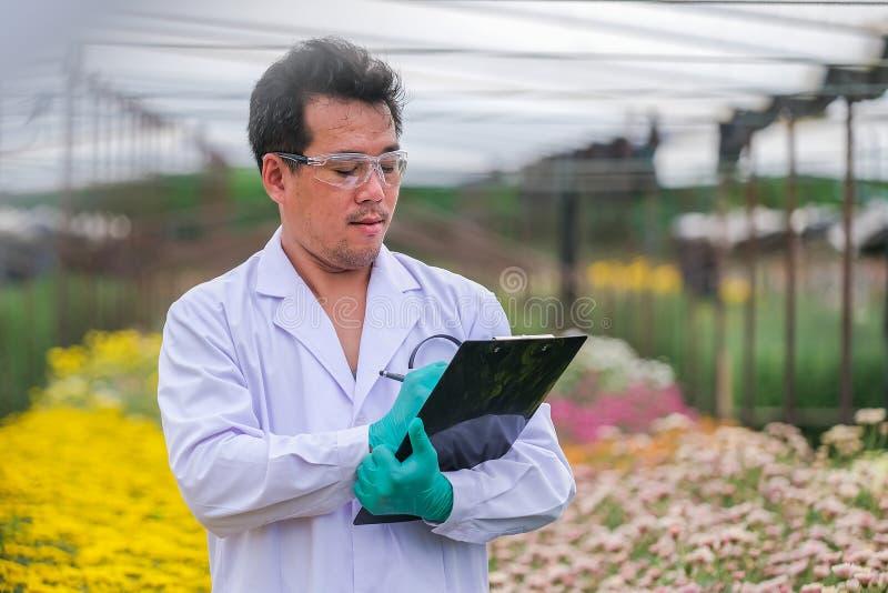 Aziatische mannelijke onderzoekers en van chrysantengegevens opname in tuin royalty-vrije stock afbeelding