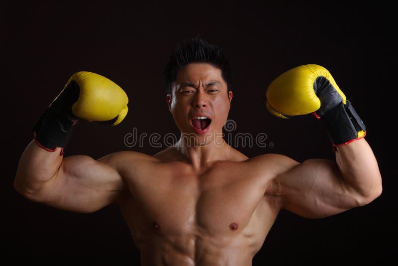 Aziatische Mens met het gele bokshandschoenen stellen royalty-vrije stock afbeeldingen