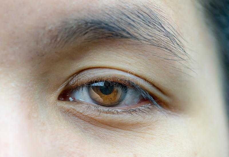 Aziatische midden oude vrouwen bruine ogen met rimpelsu royalty-vrije stock afbeelding