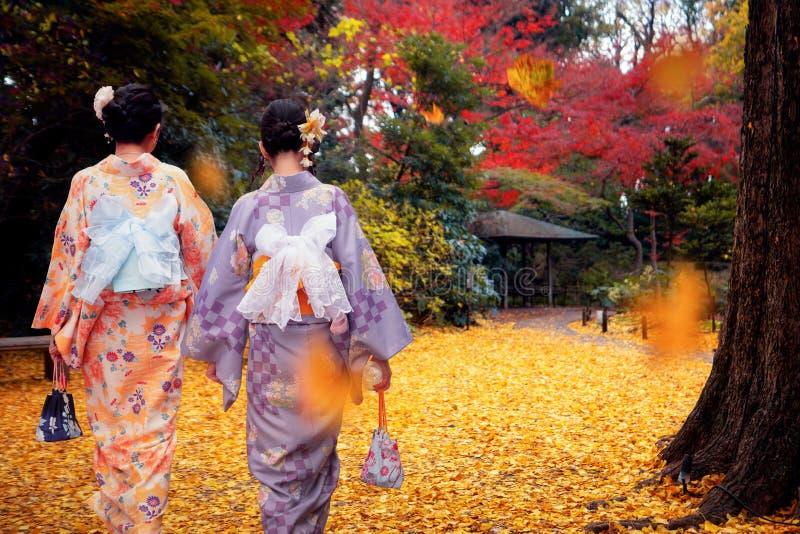 Aziatische reiziger in kimono traditionele jurk die loopt in de tuin in het najaar stock fotografie