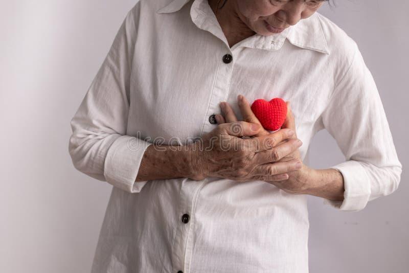 Aziatische rode het hartvorm van de bejaardegreep, concept hartkwaal stock afbeelding