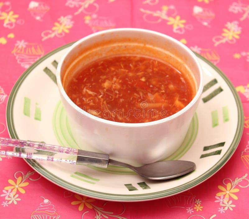 Aziatische soep stock foto